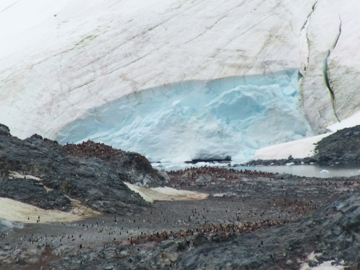 Antarctica Part 1 1501