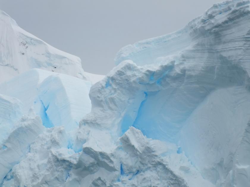 Antarctica Part 1 1589
