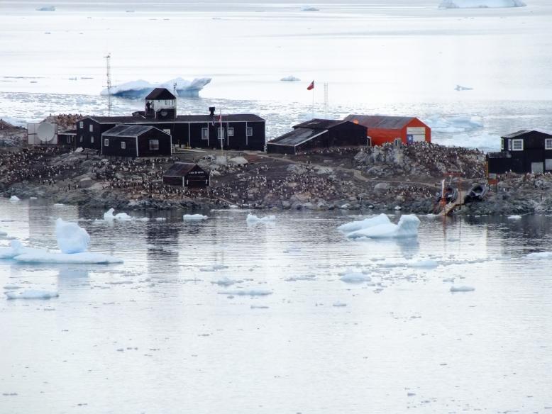 Antarctica Part 1 1607