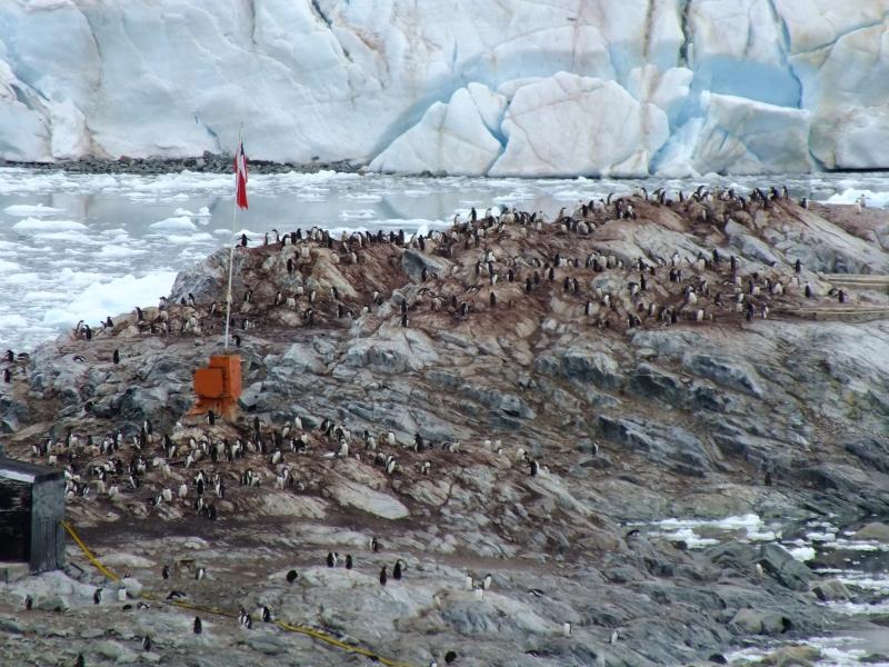 Antarctica Part 1 1619