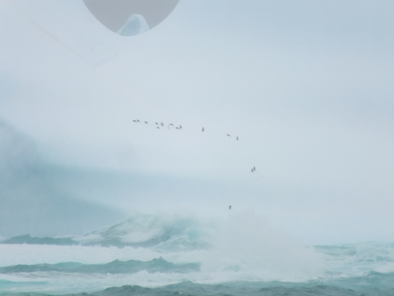 Antarctica Part 1 2207