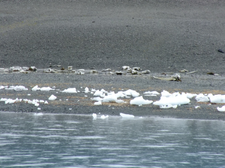 Antarctica Part 1 2305
