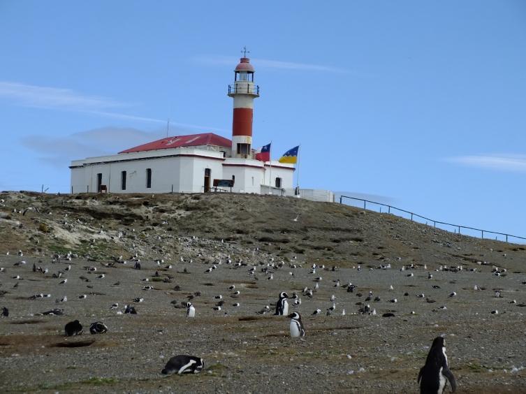 Antarctica Part 1 856